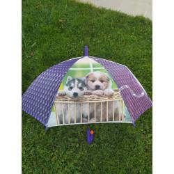 Dáždnik psíky